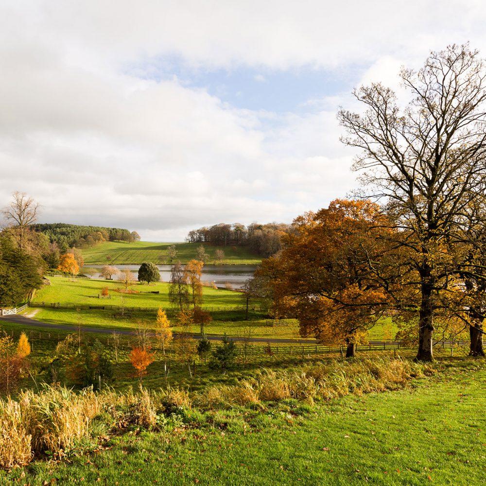 Graham Brewster Photography - Yorkshire Prints - Yorkshire - Autumn